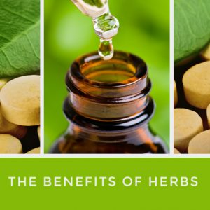 The Benefits of Herbs
